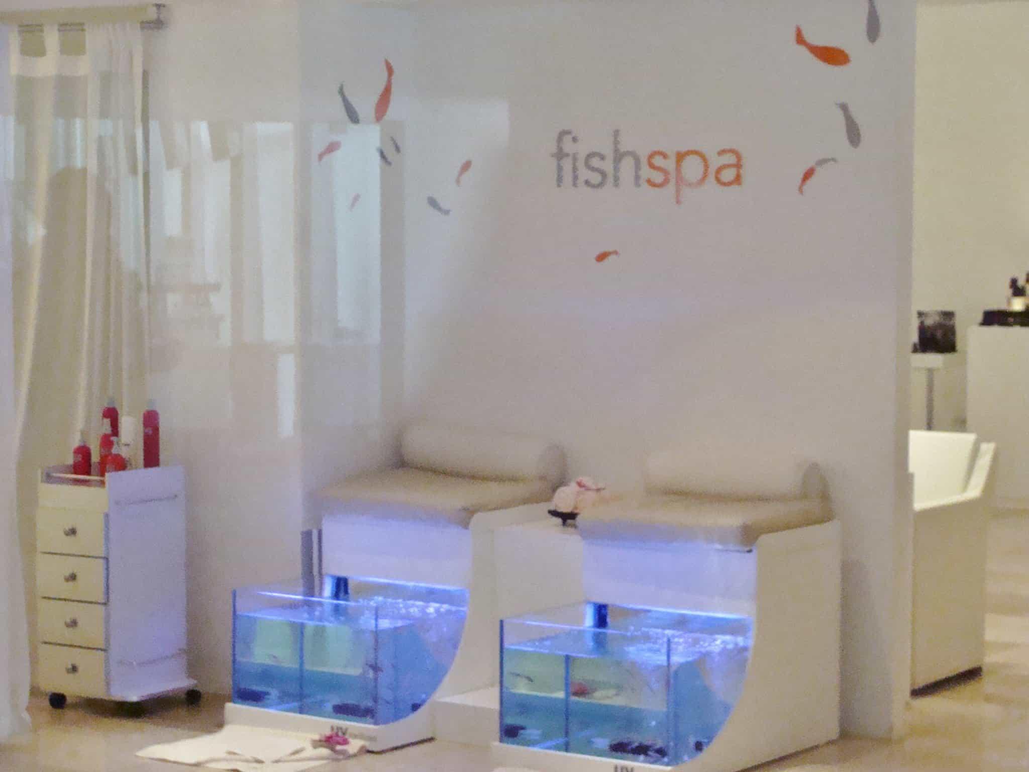 Fish Spa at Moon Palace
